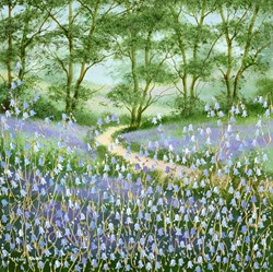 Bluebell Sanctuary III by Mary Shaw - Original Painting on Board sized 18x18 inches. Available from Whitewall Galleries